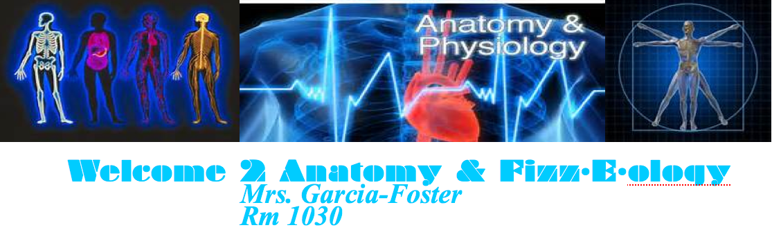 anatomygarciawestern [licensed for non-commercial use only ...